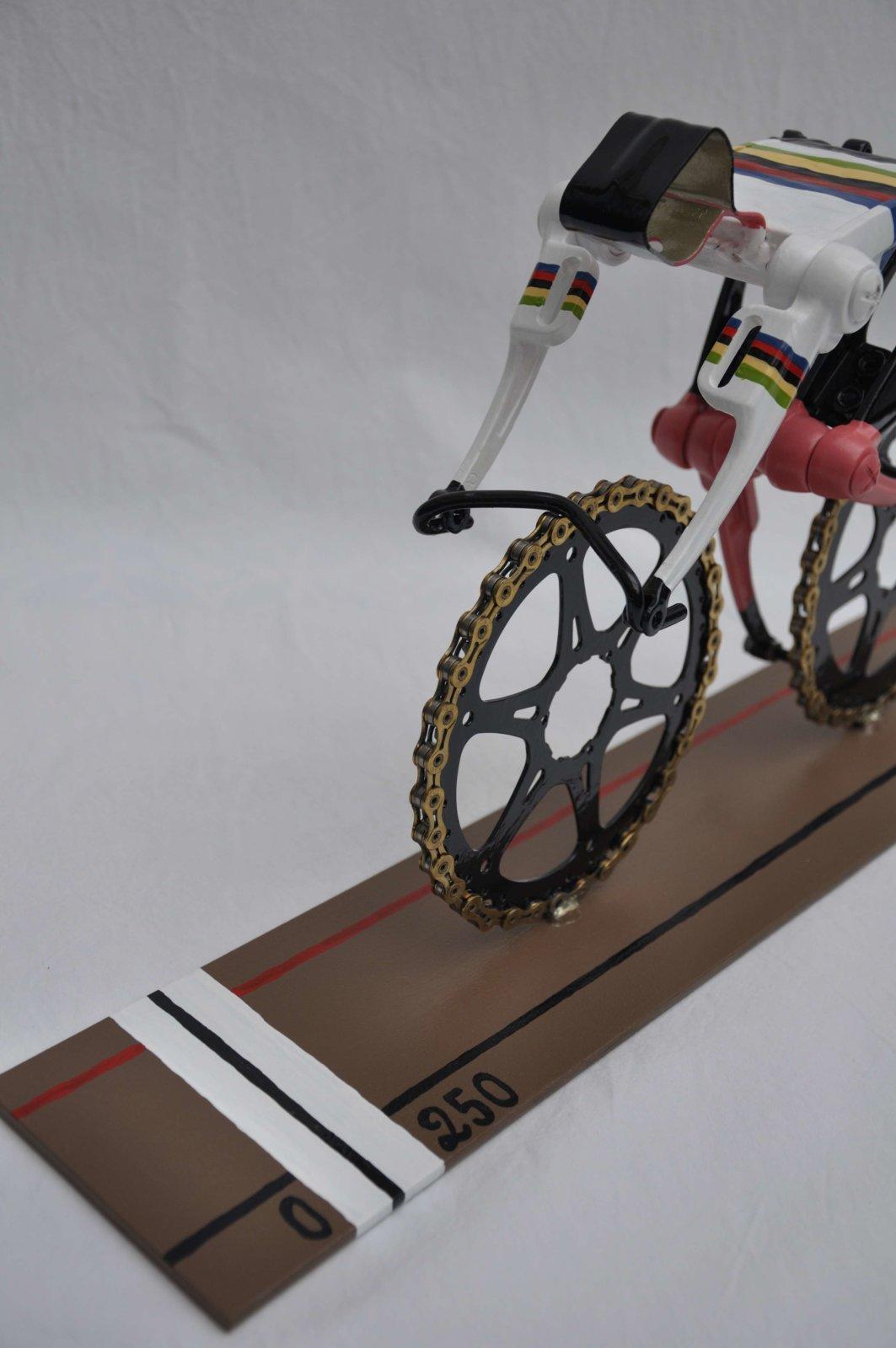 Finishline Trackcycling Velodrom Omnisport Apeldoorn World Champion Cyclist Art By Decreatievelink